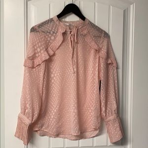 Semi-Sheer Ruffled Blouse